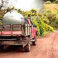 Pickup Truck by Gaspar Avila