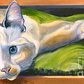 Picture Purrfect by Susan A Becker