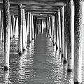Pier In by Tazz Anderson