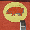 Pig On A Wall by Dave Mills