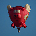 Pigs Do Fly by Ernie Echols