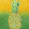 Pineapple by Dominic White