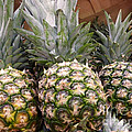 Pineapples by Methune Hively