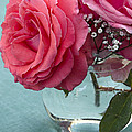 Pink And Aqua Roses by Jim And Emily Bush