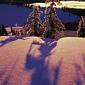 Pink And Purple Sunrise Shadows Of Snow by Natural Selection Craig Tuttle