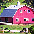 Pink Barn In The Summer by Duane McCullough