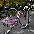 Pink Bicycle . 7d10159 by Wingsdomain Art and Photography