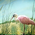 Pink Flamingo by Marilyn Hunt