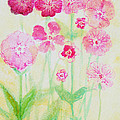 Pink Flowers by Ashleigh Dyan Bayer