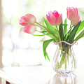 Pink Glass Vase Of Pink Tulips In Window by Jessica Holden Photography
