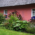 Pink Irish Cottage by Bonnie Myszka