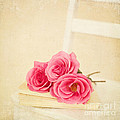 Pink Roses Laying On A Book by Kim Fearheiley