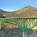 Pioneer Bridge by Loree Johnson