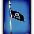 Pirate Flag by Brian Wallace