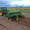Planting Foxtail Millet by Photo Researchers