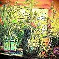 Plants by YoMamaBird Rhonda