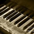 Play Me by Leslie Leda