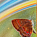 Playroom Butterfly by Bill Tiepelman