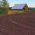 Plow Designs And A Barn by Mick Anderson