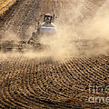 Plowing The Ground by Mike  Dawson