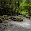 Pocantico River In The Rain by Bedford Shore Photography