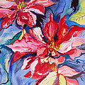 Poinsettia Color by Suzanne Willis