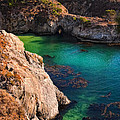 Point Lobos State Reserve California by Utah Images