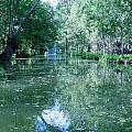 Poitevin Marsh by Poitevin Marsh
