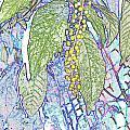 Polke Salad Dreams by Debbie Portwood