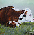 Polled Hereford Baby by Adele Pfenninger