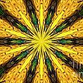 Pollination 3 by Mareko Marciniak