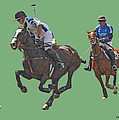 Polo 8 by Larry Linton