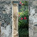Pompii Columns 1 Pompeii Italy by Mike Nellums