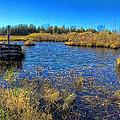 Pond 1 Today.psd by John Herzog