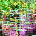 Pond In Purple by Jacob Klaus