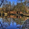Pond Reflections by Scott Wood