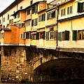 Ponte Vecchio by Daniela White