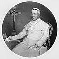 Pope Pius Ix (1792-1878) by Granger