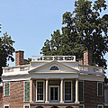 Poplar Forest From The Lawn by Teresa Mucha