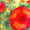 Poppies Face To The Sun by Cj Carroll