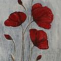 Poppies by JG Keevil