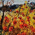 Poppies In Provence 456321 by Pol Ledent