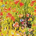 Poppies by Pg Reproductions