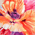 Poppy Fiesta by Ruth Harris