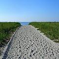 Popular Beach Path by Sarah Malley