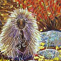 Porcupine On The Trail by Harriet Peck Taylor