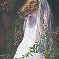 Portrait Of A Domino Afghan Hound by Gayle Rene