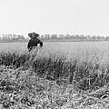 Portrait Of A Jewish Settler In A Field by Everett