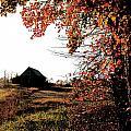Portrait Of Autumn by La Dolce Vita