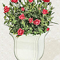 Pot Of Red Roses On Lace Background by Elaine Plesser